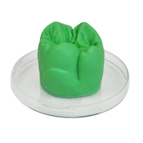 Воск моделировочный TOOTH моляр зелёный опаковый 40 г